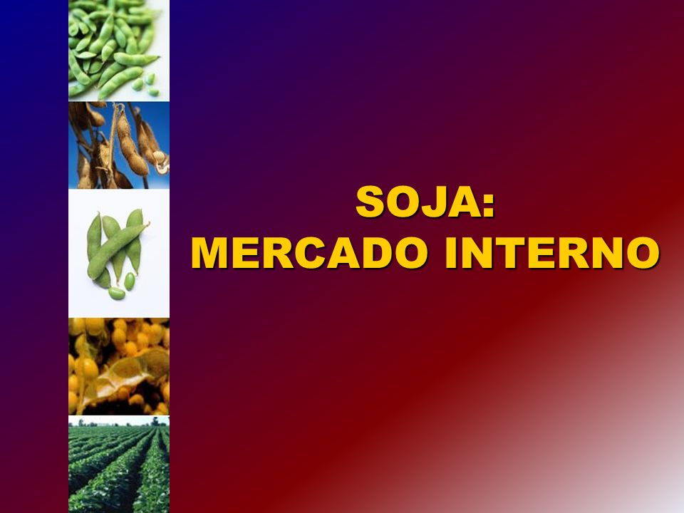 SOJA: MERCADO INTERNO