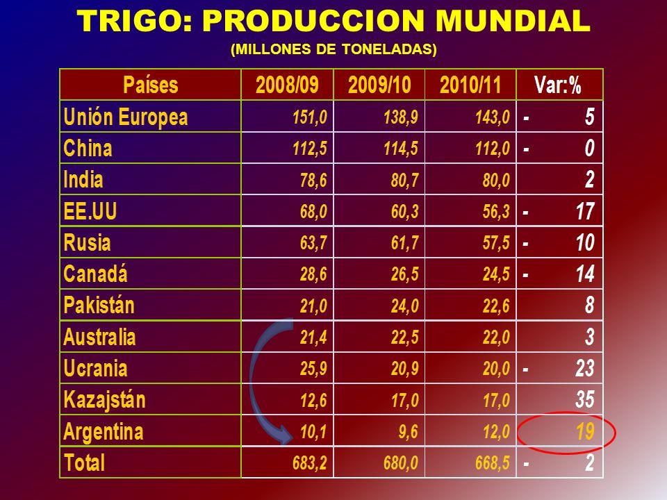 Trigo: Precio internacional y área sembrada argentina U$S/TN. HECTÁREAS