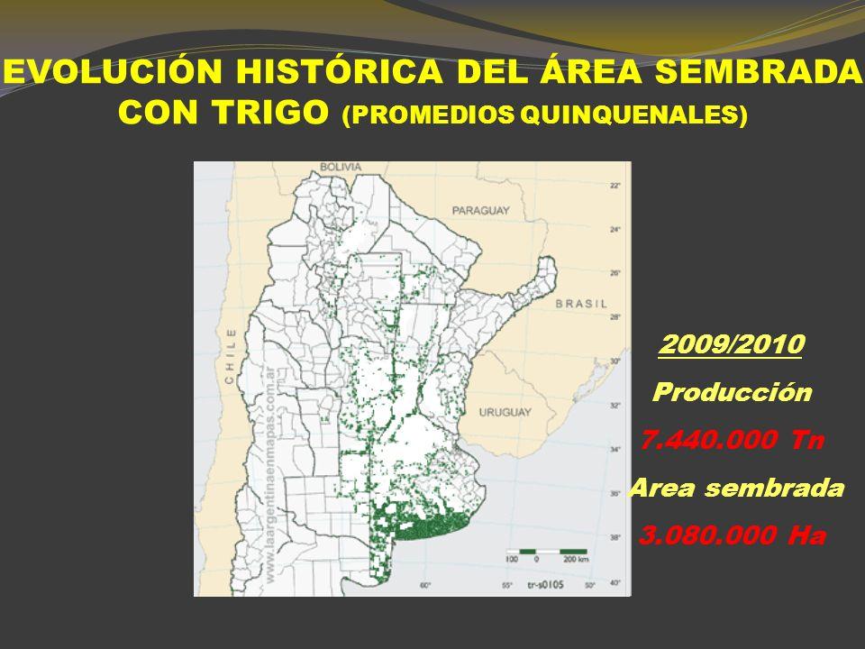 TRIGO. EVOLUCIÓN SIEMBRA Y PRODUCCIÓN DESDE 1989 HASTA 2011 SIEMBRA