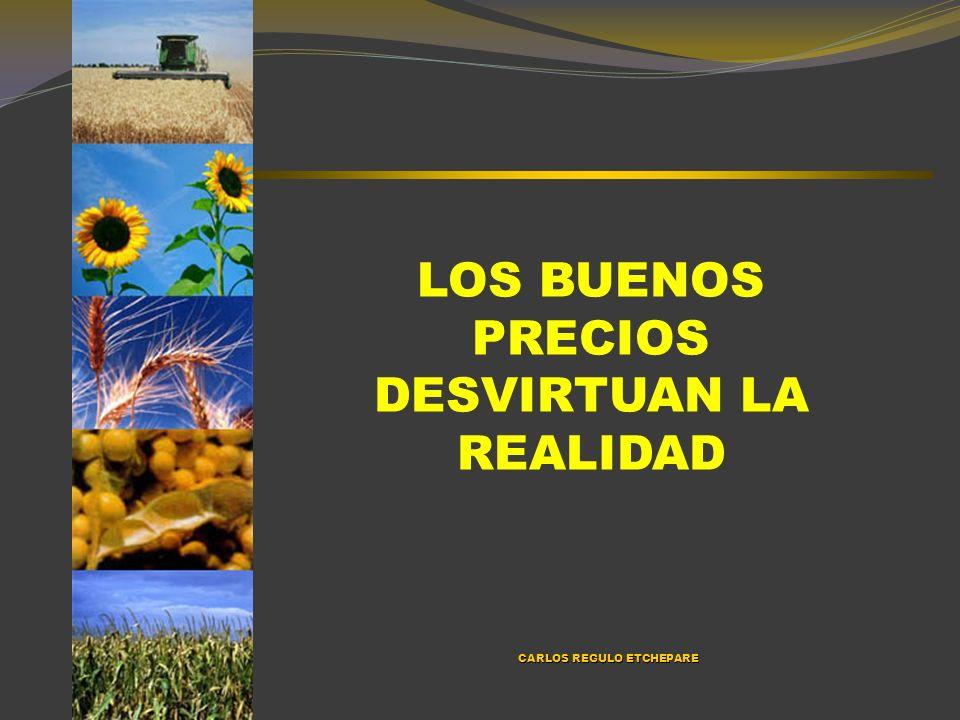 RENTABILIDAD DE LA EXPORTACIÓN, ACEITERAS Y EL TOTAL DE LA ECONOMÍA CALCULADA SOBRE EL ACTIVO.