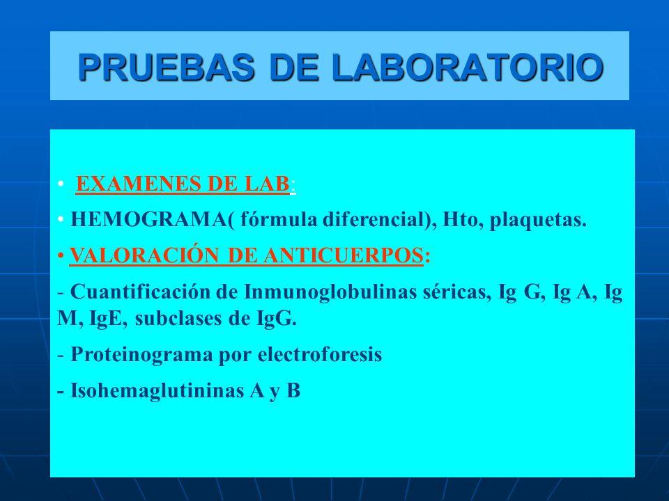 EXAMENES DE LAB: HEMOGRAMA( fórmula diferencial), Hto, plaquetas. VALORACIÓN DE ANTICUERPOS: - Cuantificación de Inmunoglobulinas séricas, Ig G, Ig A,