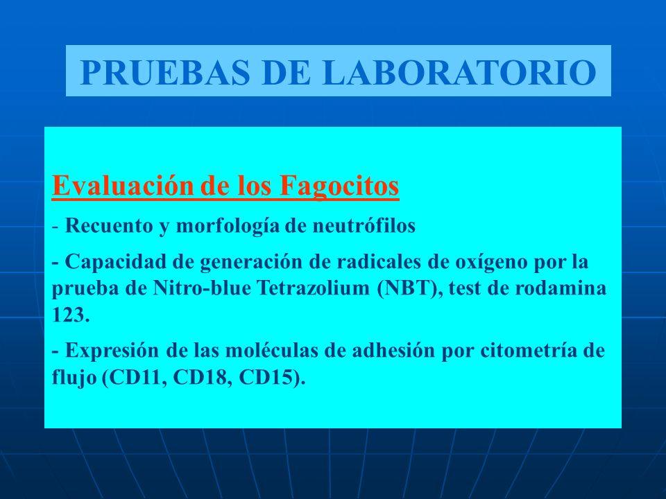 Evaluación de los Fagocitos - Recuento y morfología de neutrófilos - Capacidad de generación de radicales de oxígeno por la prueba de Nitro-blue Tetra