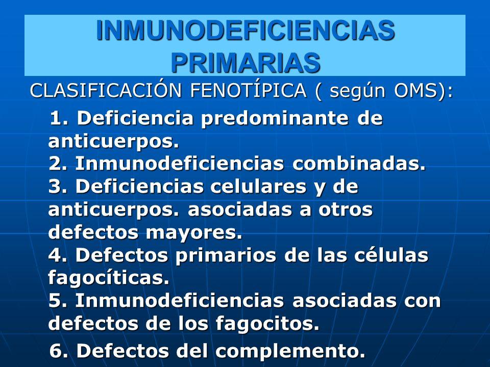 INMUNODEFICIENCIAS PRIMARIAS CLASIFICACIÓN FENOTÍPICA ( según OMS): 1. Deficiencia predominante de anticuerpos. 2. Inmunodeficiencias combinadas. 3. D
