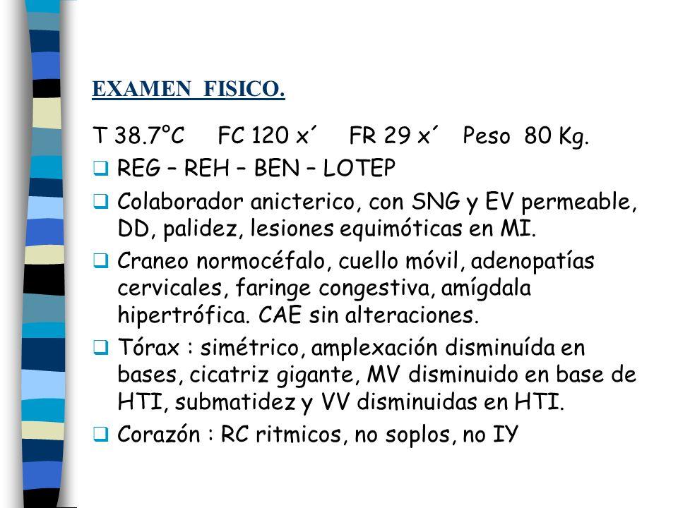 EXAMEN FISICO. T 38.7°C FC 120 x´ FR 29 x´ Peso 80 Kg. REG – REH – BEN – LOTEP Colaborador anicterico, con SNG y EV permeable, DD, palidez, lesiones e