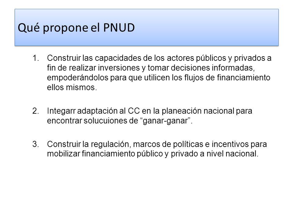 Qué propone el PNUD 1. Construir las capacidades de los actores públicos y privados a fin de realizar inversiones y tomar decisiones informadas, empod
