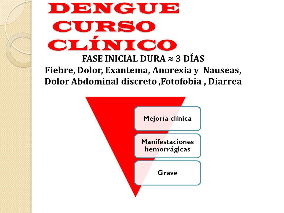 DENGUE CURSO CLÍNICO Mejoría clínica Manifestaciones hemorrágicas Grave FASE INICIAL DURA 3 DÍAS Fiebre, Dolor, Exantema, Anorexia y Nauseas, Dolor Ab