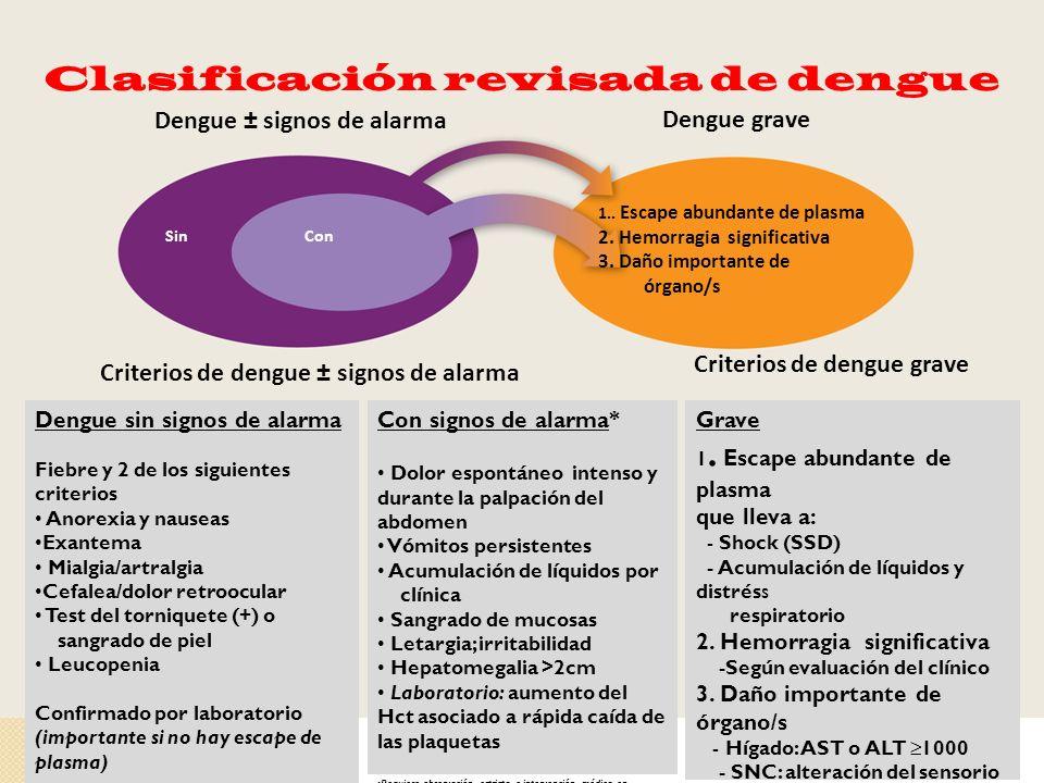 Clasificación revisada de dengue 1.. Escape abundante de plasma 2. Hemorragia significativa 3. Daño importante de órgano/s Dengue graveDengue ± signos