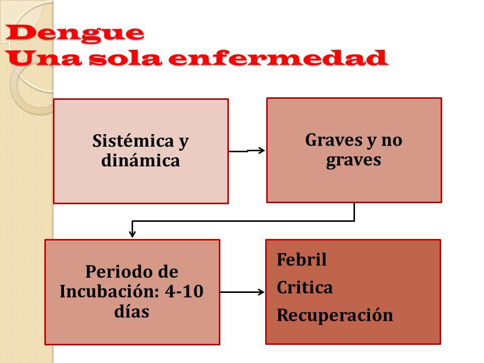 Grupo C.