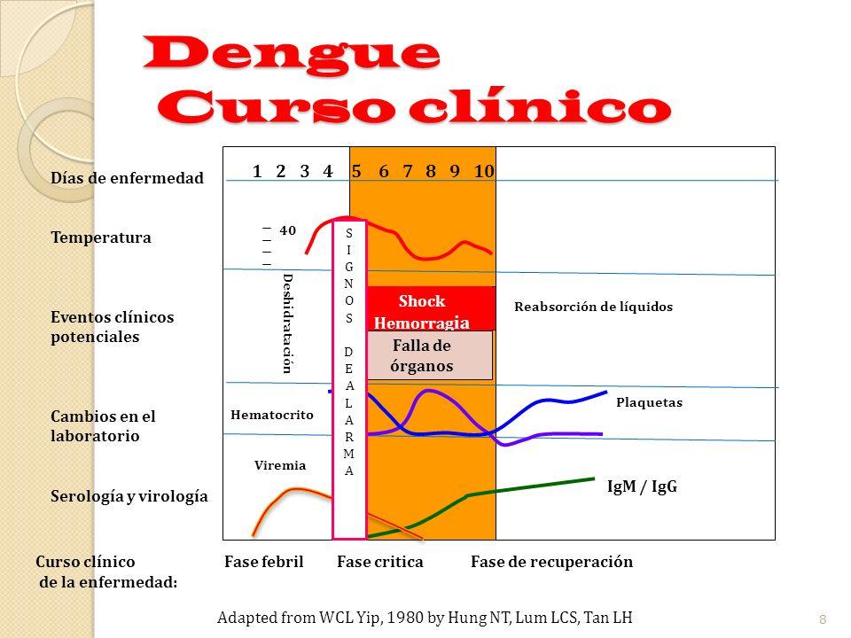 1 2 3 4 5 6 7 8 9 10 40 Viremia Curso clínico Fase febril Fase critica Fase de recuperación de la enfermedad: Shock Hemorrag ia Reabsorción de líquido