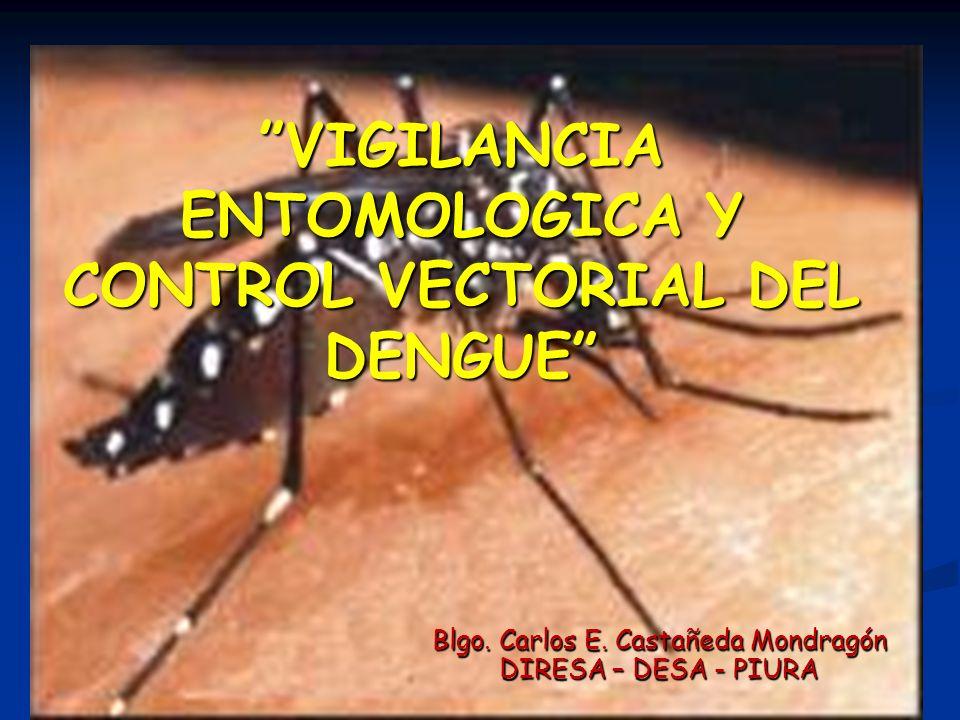 VIGILANCIA ENTOMOLOGICA Y CONTROL VECTORIAL DEL DENGUE Blgo. Carlos E. Castañeda Mondragón DIRESA – DESA - PIURA