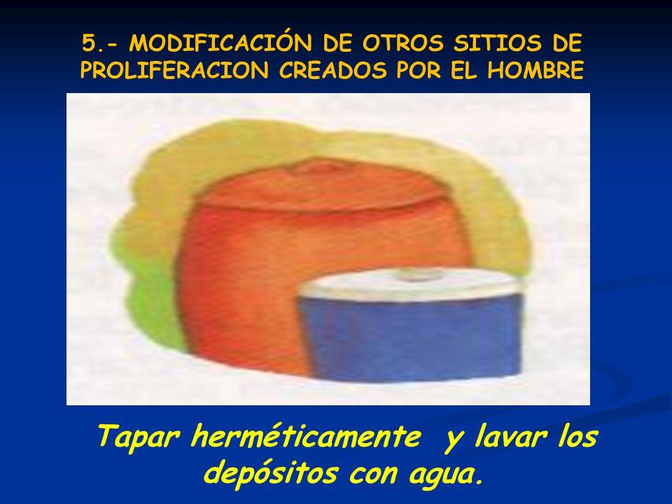 Tapar herméticamente y lavar los depósitos con agua. 5.- MODIFICACIÓN DE OTROS SITIOS DE PROLIFERACION CREADOS POR EL HOMBRE