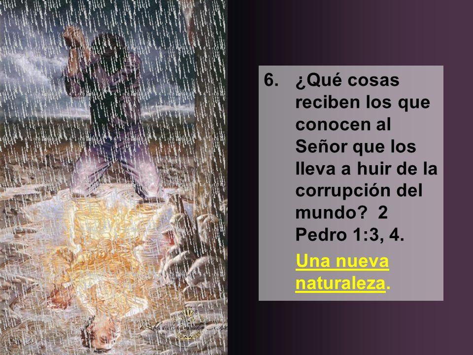 6.¿Qué cosas reciben los que conocen al Señor que los lleva a huir de la corrupción del mundo? 2 Pedro 1:3, 4. Una nueva naturaleza.