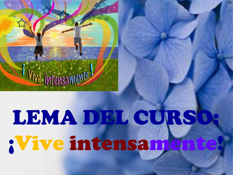 LEMA DEL CURSO: ¡Vive intensamente!