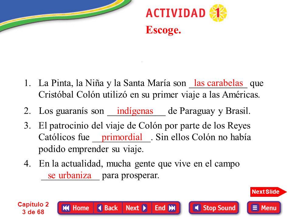 Capítulo 2 13 de 68 Next Slide La influencia de las poblaciones indígenas es inmensa sobre todo en países como México, Guatemala, Ecuador, Perú, Bolivia y Paraguay.