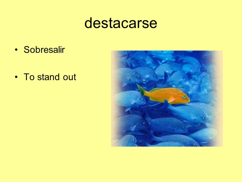 destacarse Sobresalir To stand out
