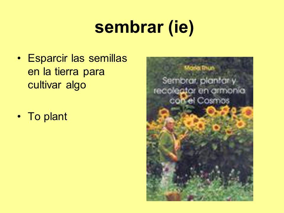 sembrar (ie) Esparcir las semillas en la tierra para cultivar algo To plant