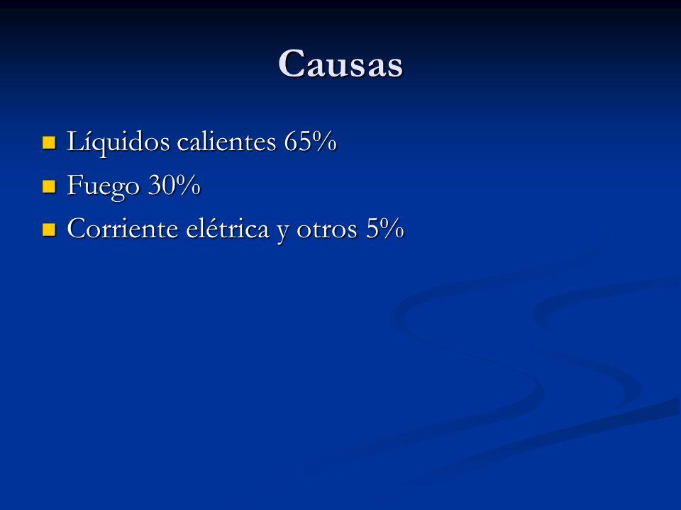 Causas Líquidos calientes 65% Líquidos calientes 65% Fuego 30% Fuego 30% Corriente elétrica y otros 5% Corriente elétrica y otros 5%