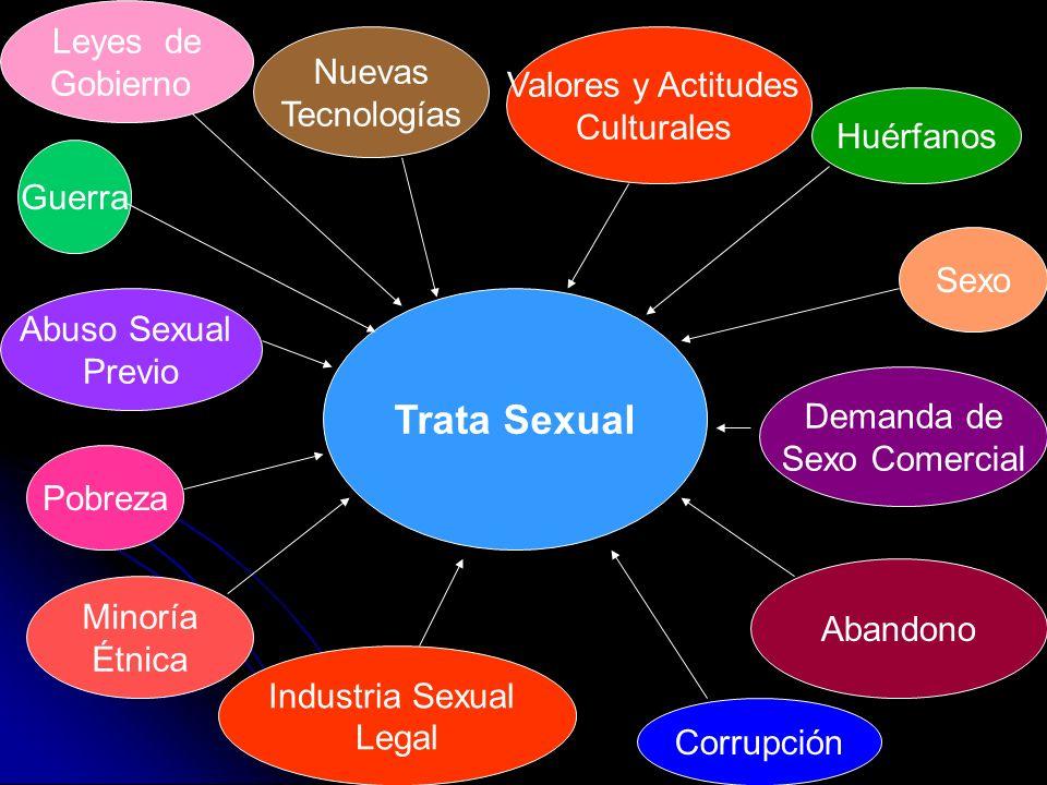 Trata Sexual Guerra Nuevas Tecnologías Valores y Actitudes Culturales Pobreza Minoría Étnica Huérfanos Abandono Industria Sexual Legal Corrupción Abus
