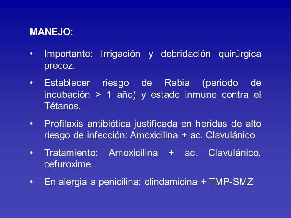 ENFERMEDADNº CASOS Toxoplasmosis congénita15 Toxoplasmosis adquirida3 Enfermedad x arañazo gato11 Toxocariasis LMVI/encubierta8 Toxocariasis ocular2 Mordedura canina infectada Mordedura por mono Mordedura por gato 531531 Infecciones Asociadas a Mascotas Candela J.