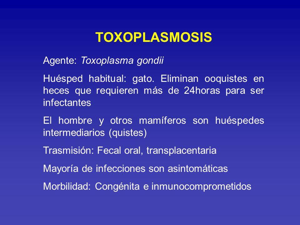 Toxoplasmosis congénita: Primoinfección durante gestación o reactivación en gestantes inmunocomprometidas Riesgo de trasmisión y severidad inversamente relacionadas Aborto, microcefalia, hidrocefalia, calcificaciones cerebrales, convulsiones, corioretinitis, hepato y esplenomegalia, deficiencia psicomotora, retardo mental.