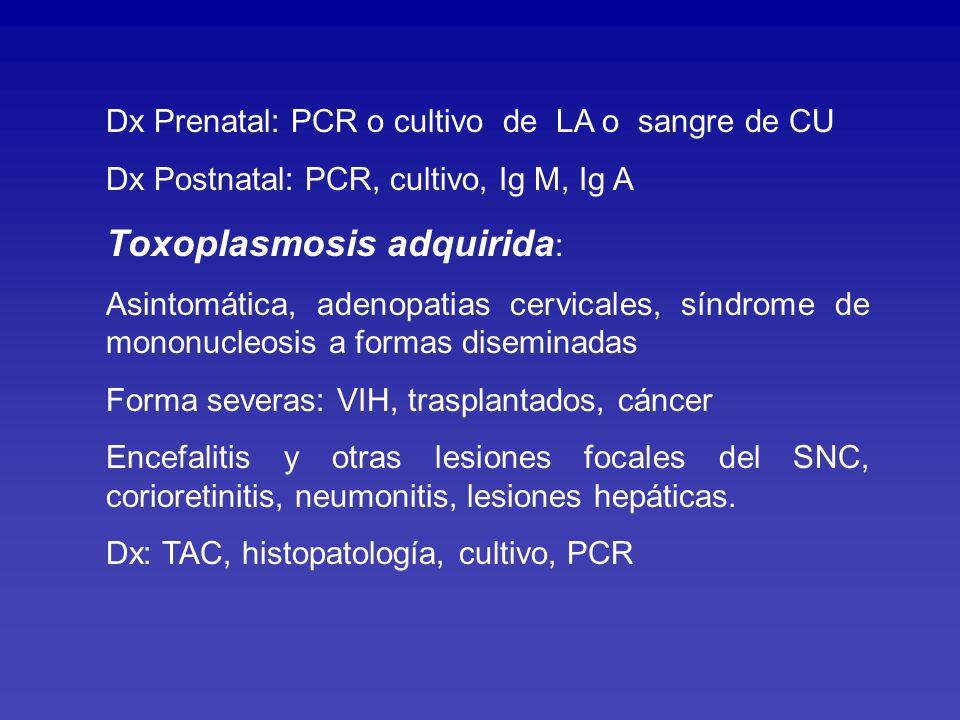Tratamiento: Toxoplamosis congénita, Inmunocomprometidos y formas severas en inmunocompetentes Fármacos: Pirimetamina + sulfadiazina o clindamicina Leucovorin: 5-10 mg/d en días alternos Corticoides: corioretinitis, encefalitis Manejo especializado: Infectólogo, oftalmólogo, neurólogo