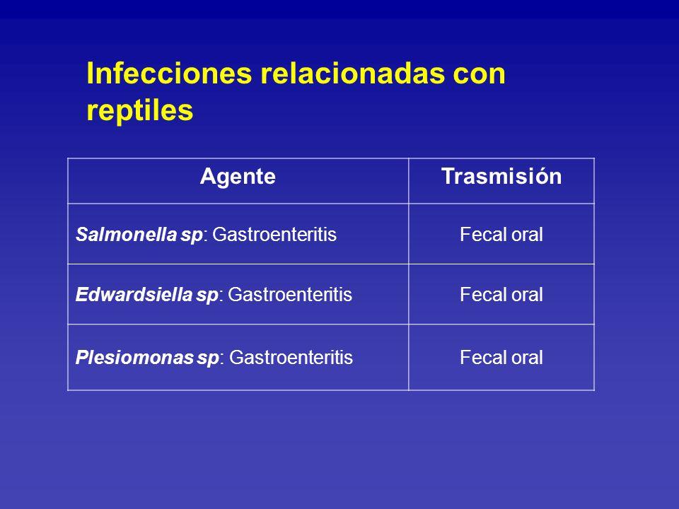 Infecciones relacionadas con especies de acuario Mycobacterium marinum Trasmisión por contacto directo con agua o especies de acuario.