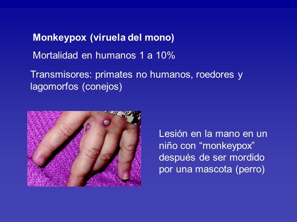 PREVENCION: Evite animales exóticos, salvajes o abandonados como mascotas.