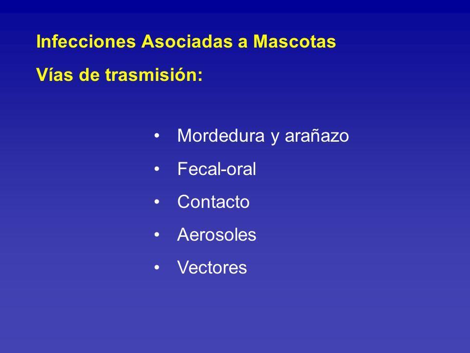 Accidentes por mordedura según especie de animal agresor Total : 115 casos