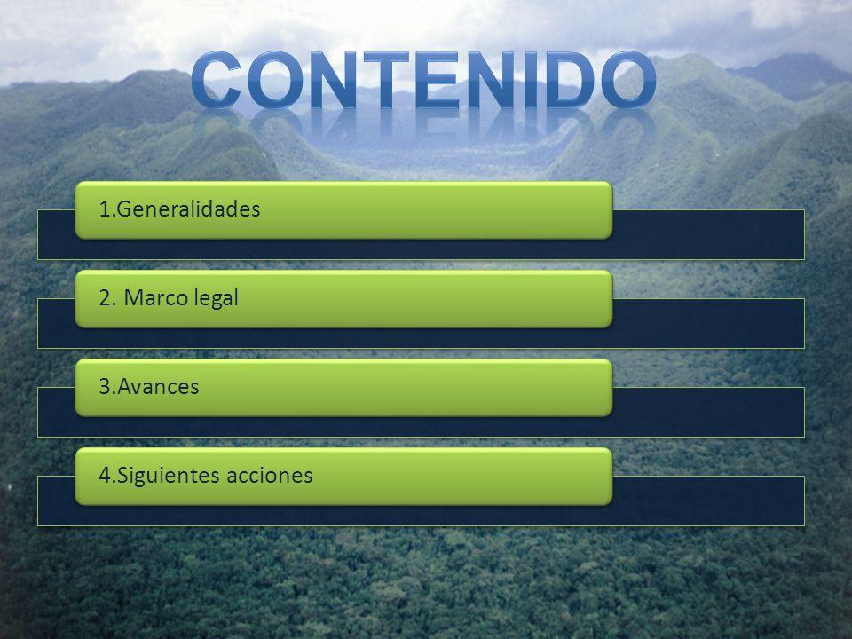 1.Generalidades2. Marco legal3.Avances4.Siguientes acciones