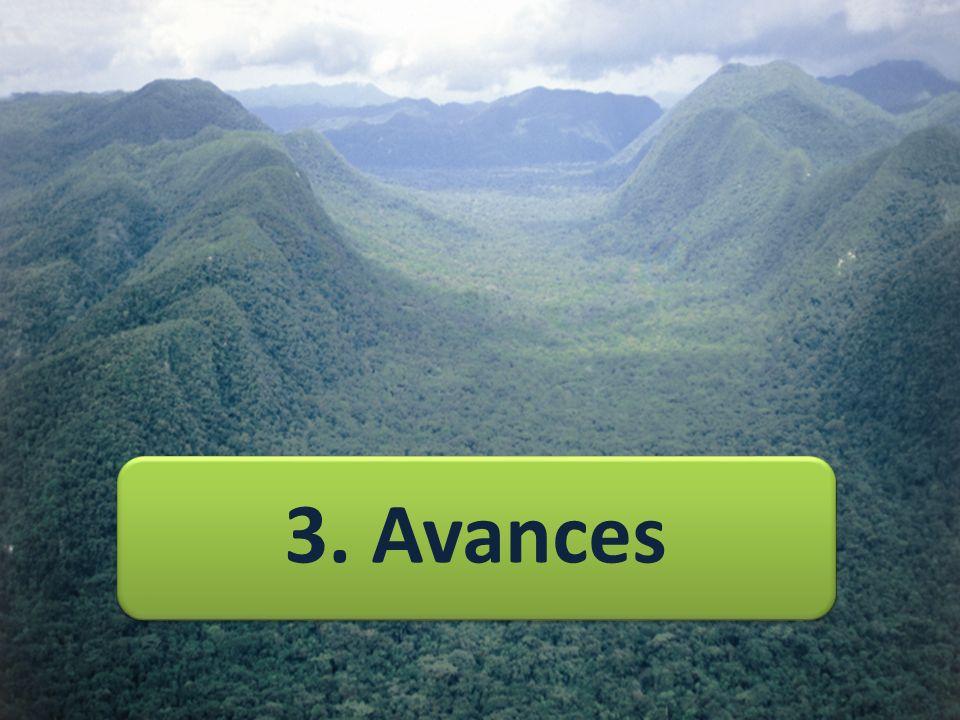 3. Avances