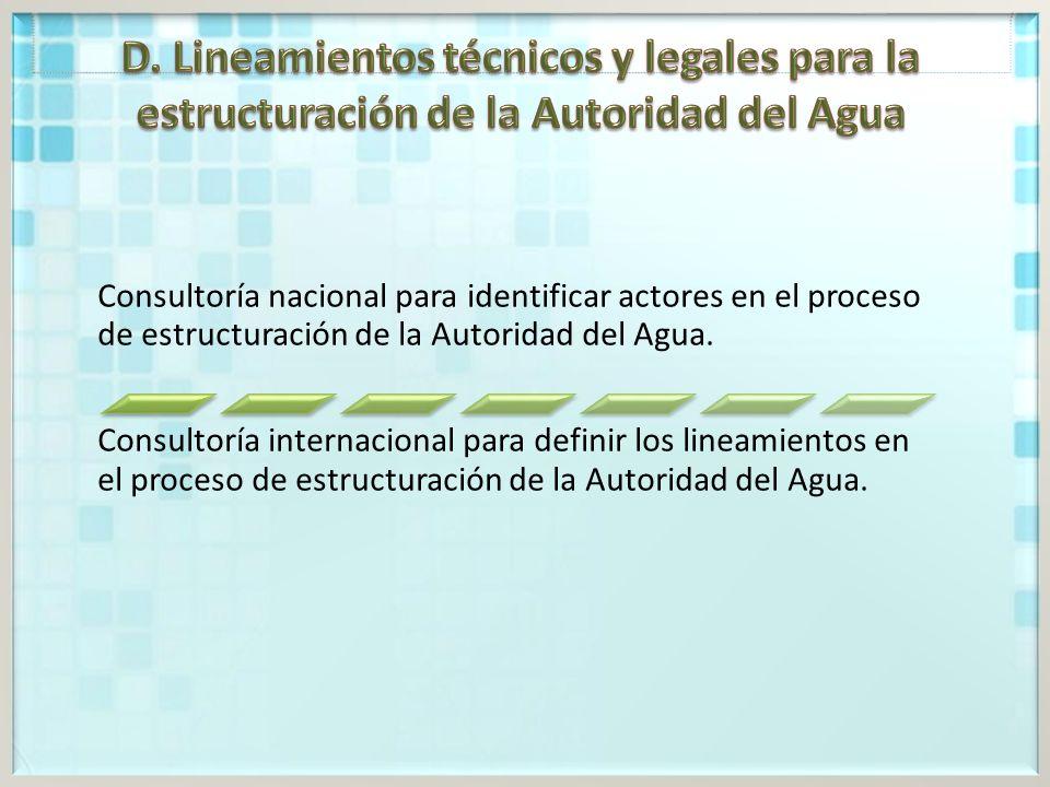 Consultoría nacional para identificar actores en el proceso de estructuración de la Autoridad del Agua.