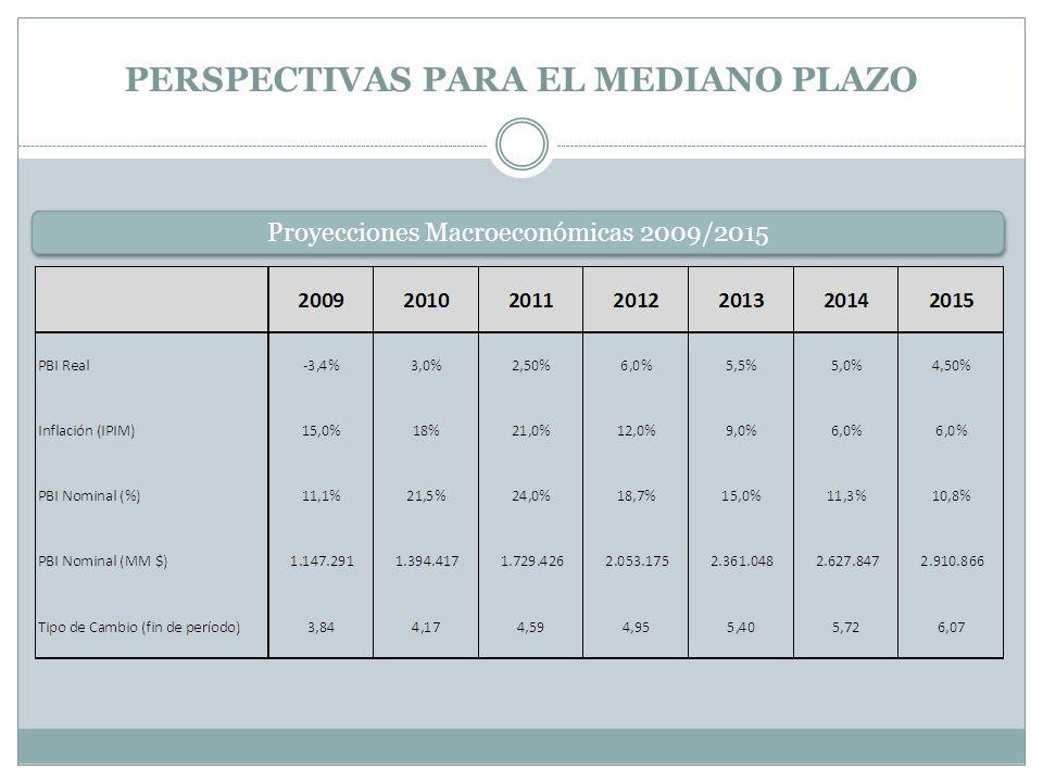 PERSPECTIVAS PARA EL MEDIANO PLAZO Proyecciones Macroeconómicas 2009/2015