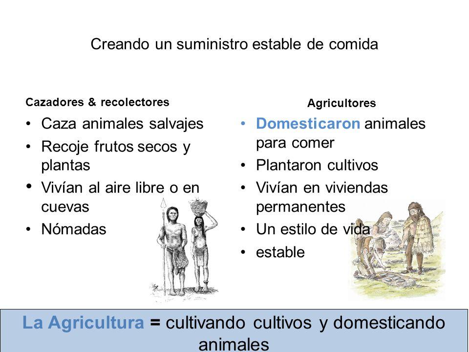 vivienda permanente Protección contra el tiempo Proteción contra animales salvajes Más CómodaPodía establecer communidades Nuevas maneras de cocinar