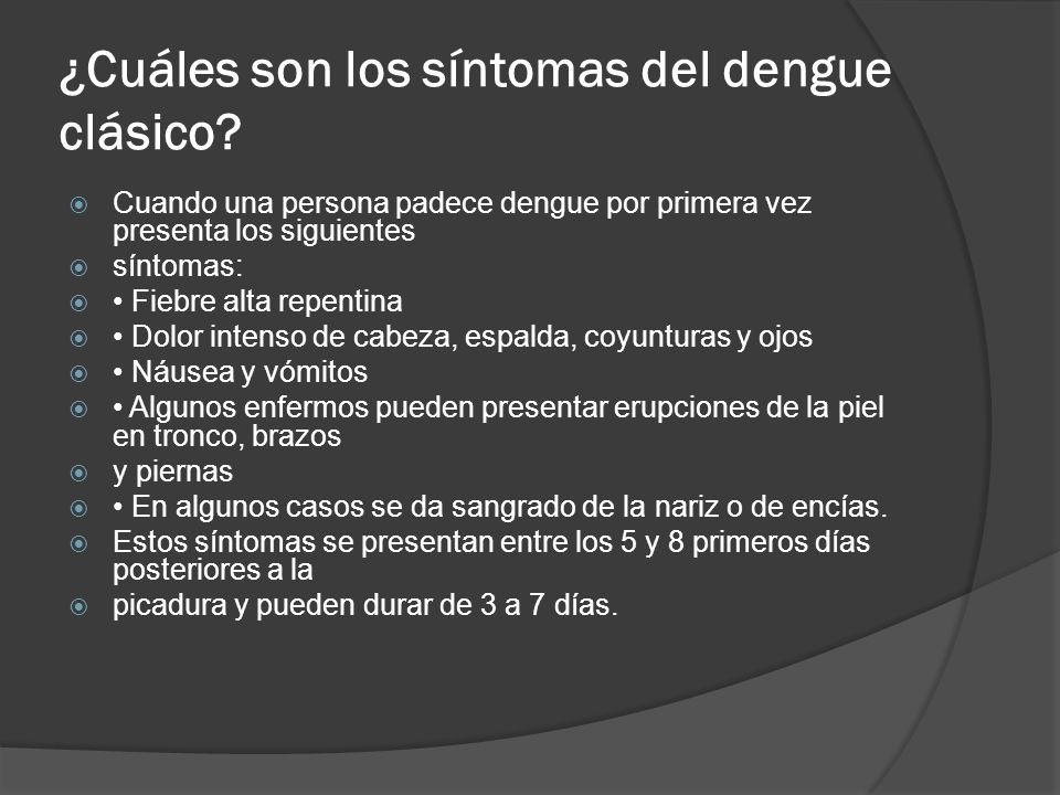 ¿Cuáles son los síntomas del dengue clásico? Cuando una persona padece dengue por primera vez presenta los siguientes síntomas: Fiebre alta repentina