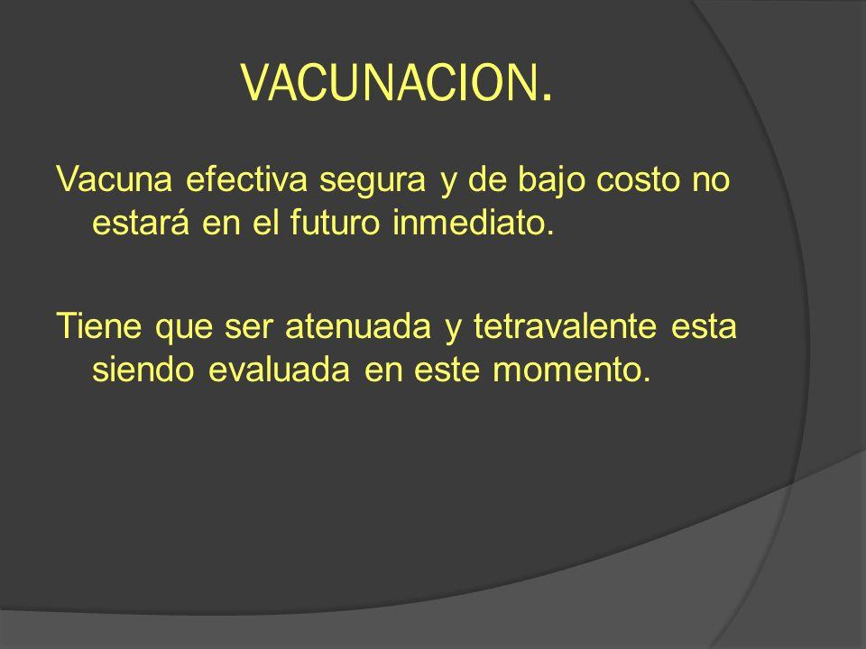 VACUNACION. Vacuna efectiva segura y de bajo costo no estará en el futuro inmediato. Tiene que ser atenuada y tetravalente esta siendo evaluada en est