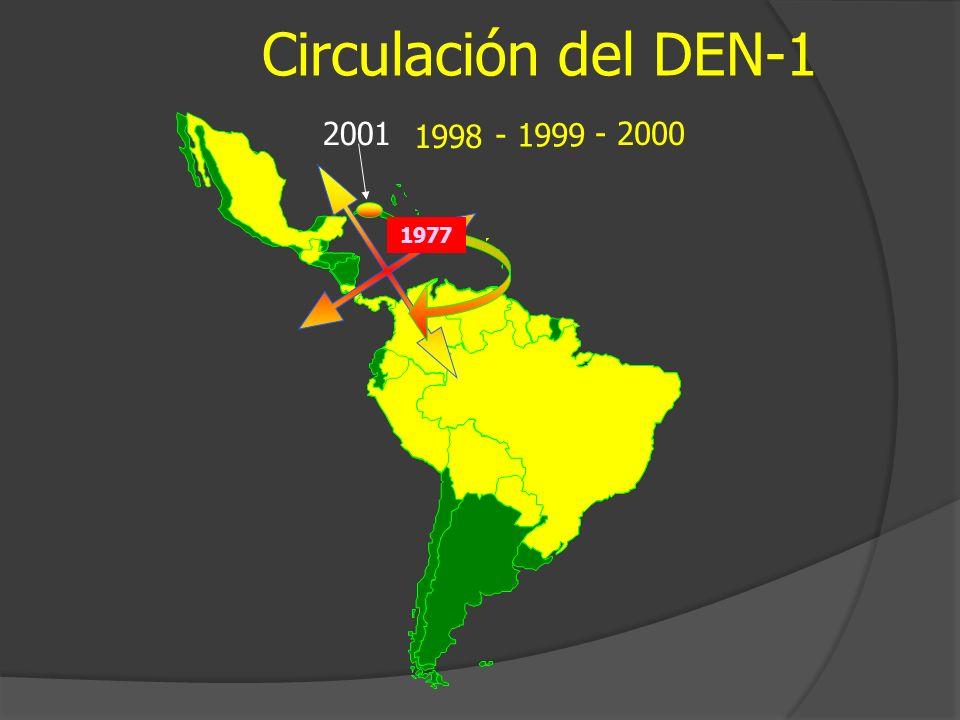 Circulación del DEN-1 - 2000 - 1999 1998 1977 2001