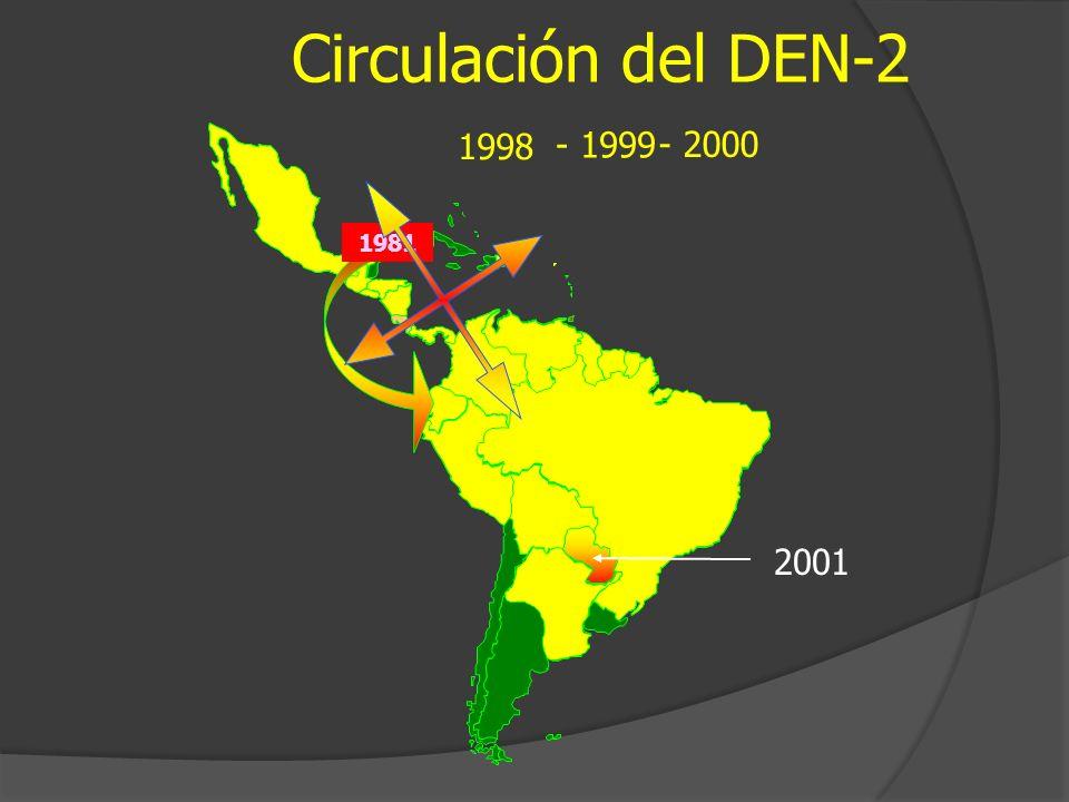 Circulación del DEN-2 - 2000 1998 1981 2001 - 1999