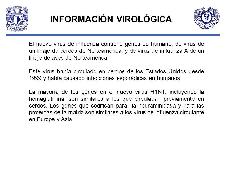 INFORMACIÓN VIROLÓGICA El nuevo virus de influenza contiene genes de humano, de virus de un linaje de cerdos de Norteamérica, y de virus de influenza