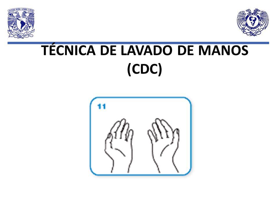 TÉCNICA DE LAVADO DE MANOS (CDC)