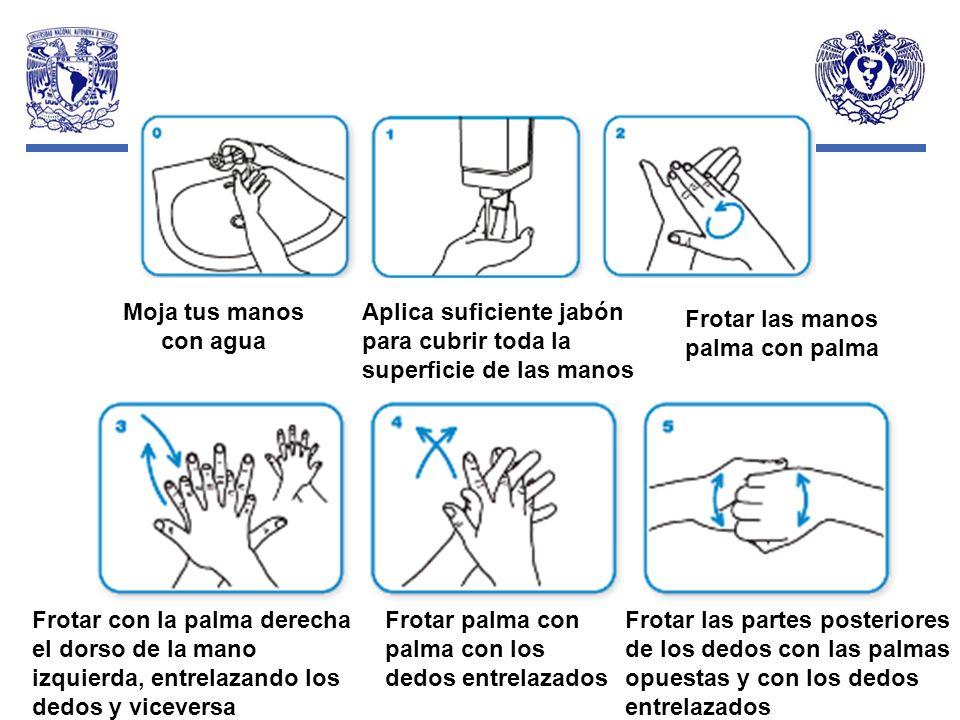 Moja tus manos con agua Aplica suficiente jabón para cubrir toda la superficie de las manos Frotar las manos palma con palma Frotar con la palma derec