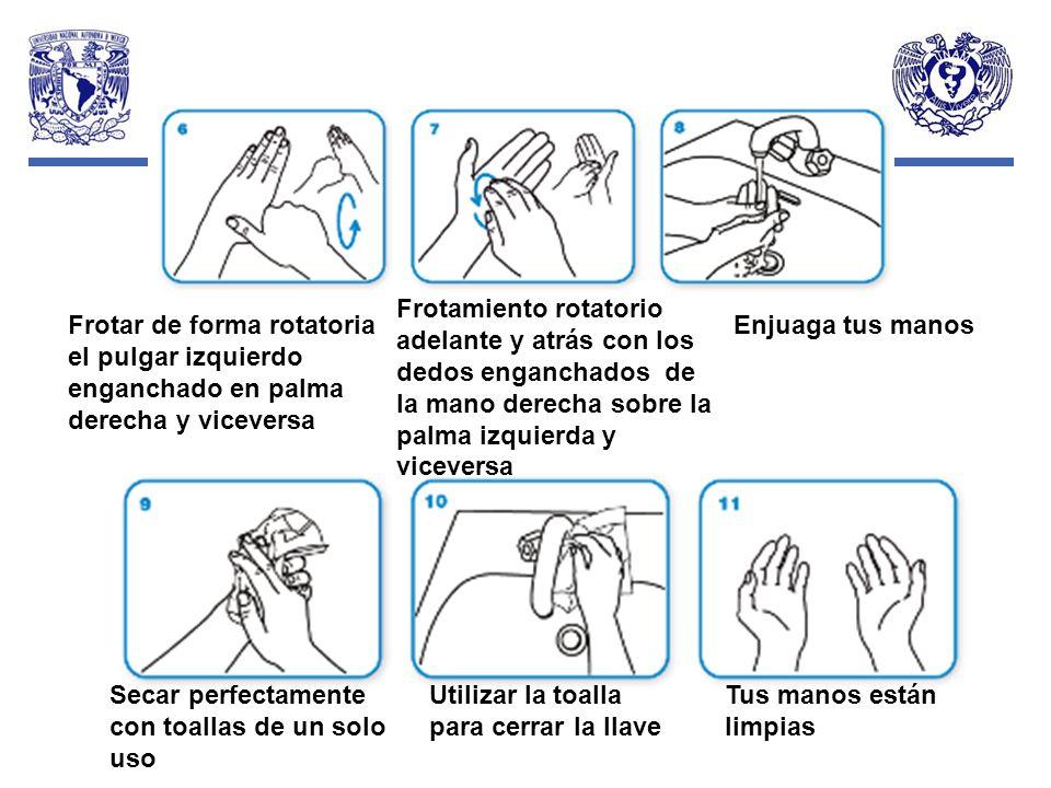 Secar perfectamente con toallas de un solo uso Utilizar la toalla para cerrar la llave Tus manos están limpias Frotar de forma rotatoria el pulgar izq