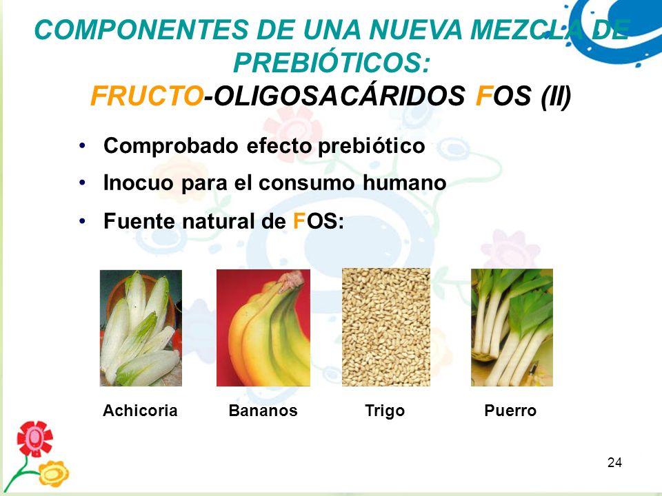 24 Fuente natural de FOS: PuerroAchicoriaBananosTrigo Comprobado efecto prebiótico Inocuo para el consumo humano COMPONENTES DE UNA NUEVA MEZCLA DE PR