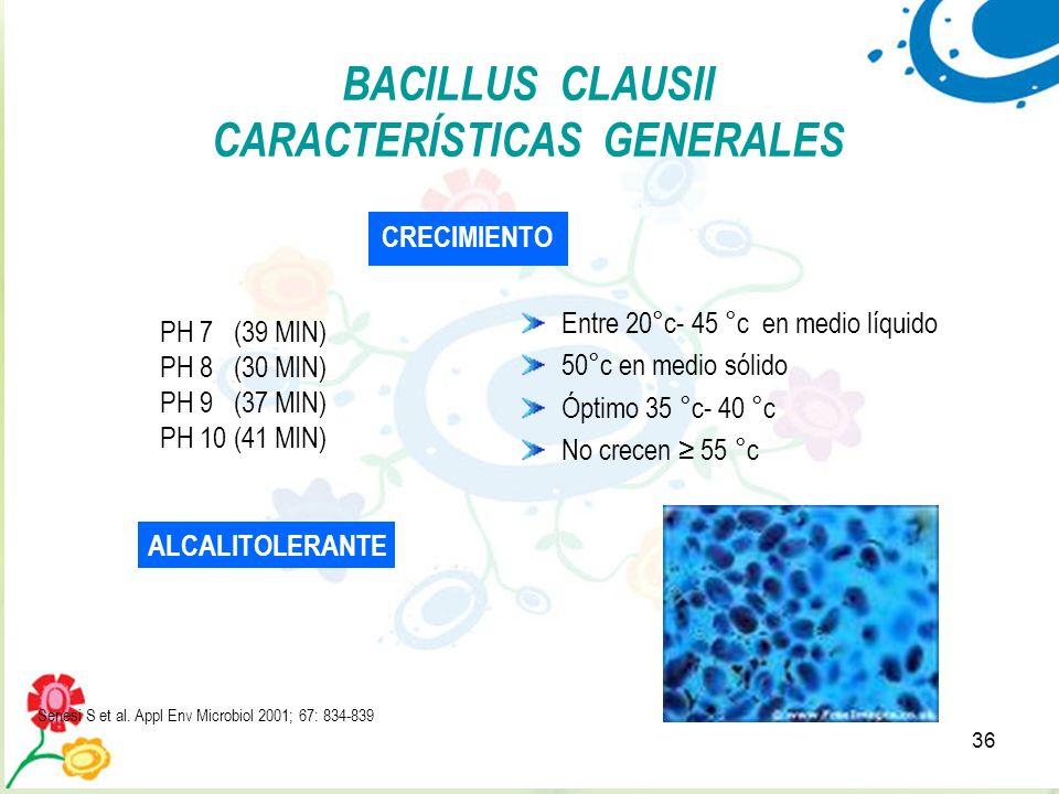 36 Entre 20°c- 45 °c en medio líquido 50°c en medio sólido Óptimo 35 °c- 40 °c No crecen 55 °c BACILLUS CLAUSII CARACTERÍSTICAS GENERALES CRECIMIENTO