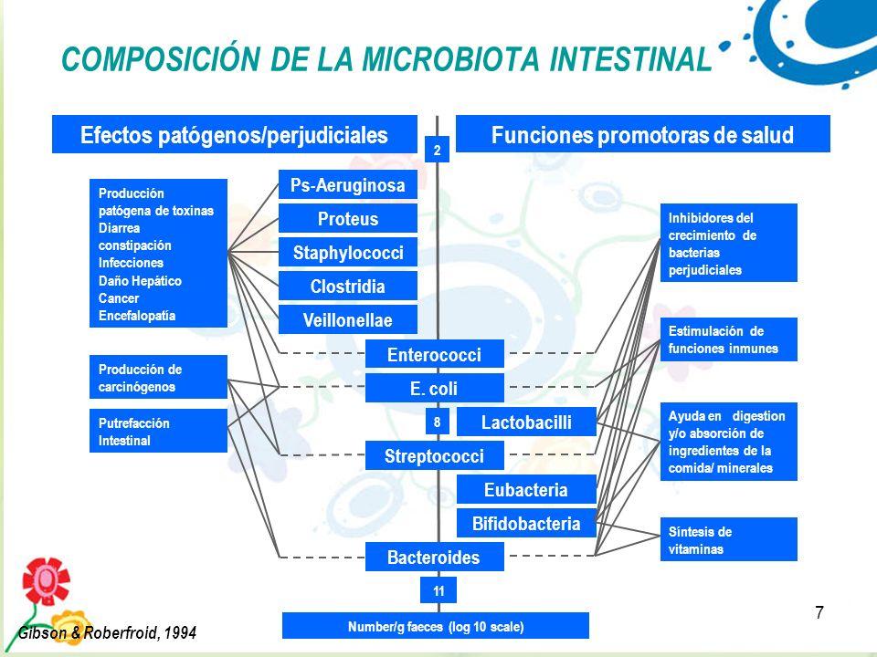 7 COMPOSICIÓN DE LA MICROBIOTA INTESTINAL Efectos patógenos/perjudiciales Lactobacilli Eubacteria Bifidobacteria Funciones promotoras de salud Ps-Aeru