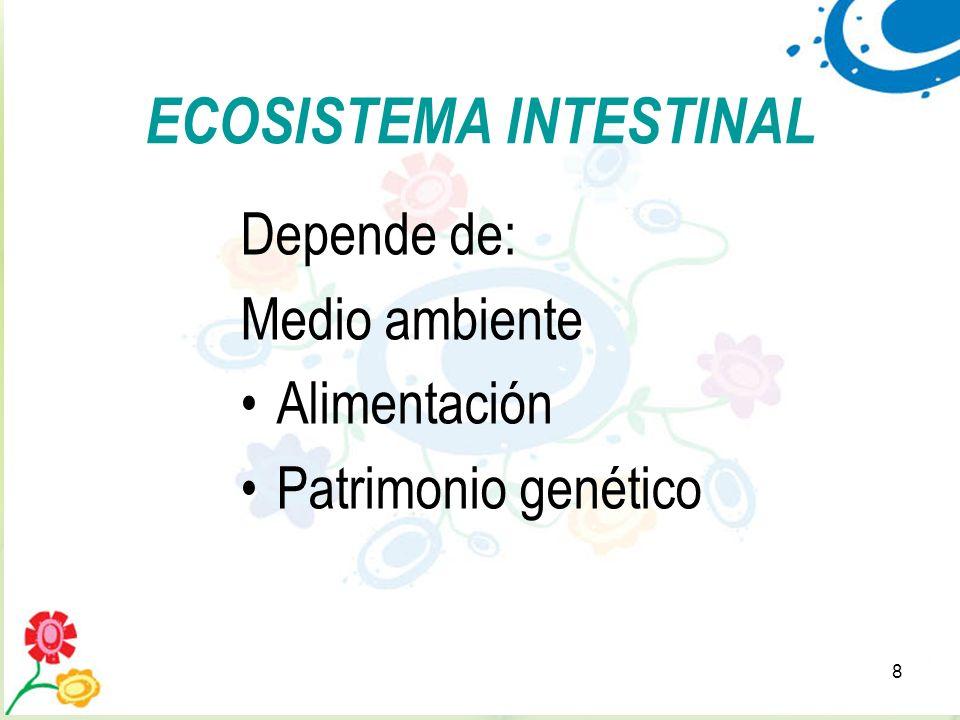 8 ECOSISTEMA INTESTINAL Depende de: Medio ambiente Alimentación Patrimonio genético