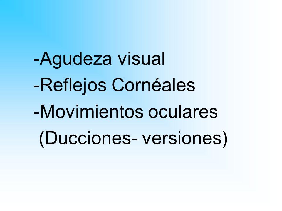 -Agudeza visual -Reflejos Cornéales -Movimientos oculares (Ducciones- versiones)