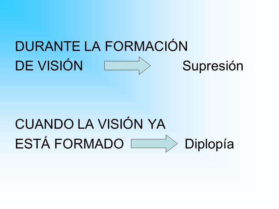 DURANTE LA FORMACIÓN DE VISIÓN Supresión CUANDO LA VISIÓN YA ESTÁ FORMADO Diplopía