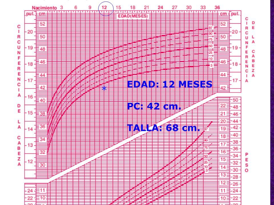 53 * EDAD: 12 MESES PC: 42 cm. TALLA: 68 cm.