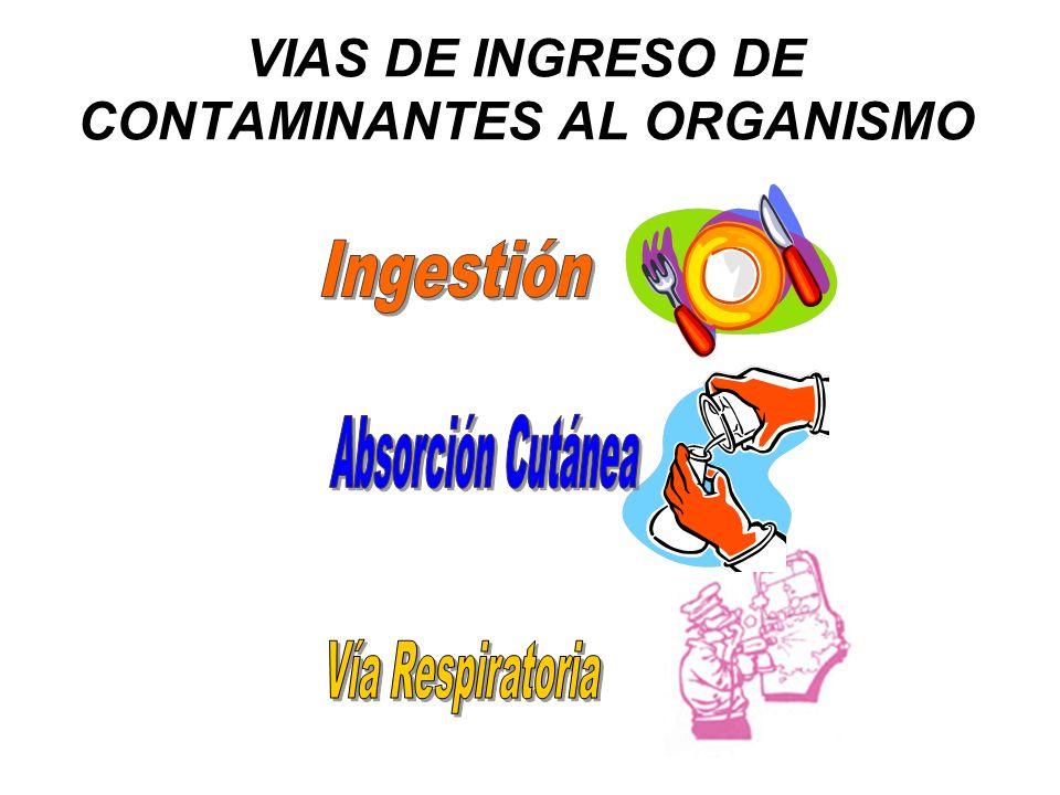 VIAS DE INGRESO DE CONTAMINANTES AL ORGANISMO