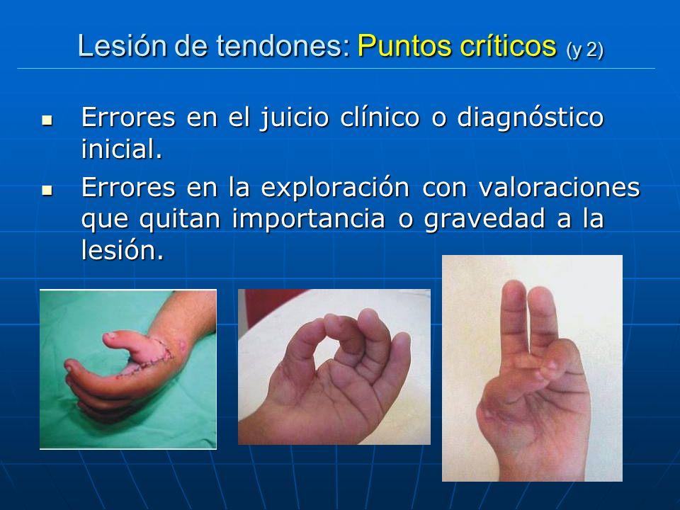 Lesión de tendones: Puntos críticos (y 2) Errores en el juicio clínico o diagnóstico inicial. Errores en el juicio clínico o diagnóstico inicial. Erro